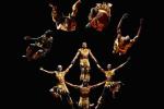 Pamoja-Acrobats